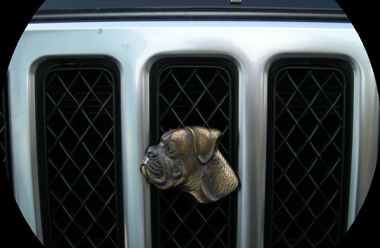 AUTOGIPFEL: Keine staatliche Gnade für den Verbrennungsmotor